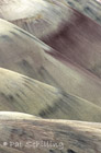 Painted Hills 13