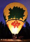 Illuminated For Flight
