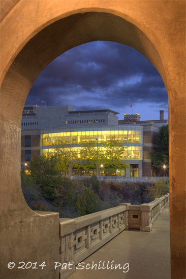 Bridge to the Library