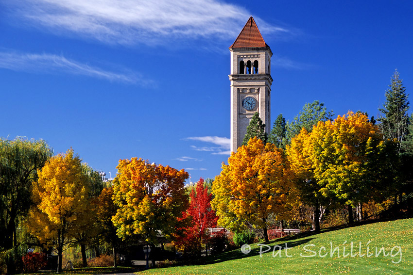 Clock Tower In Autumn 2