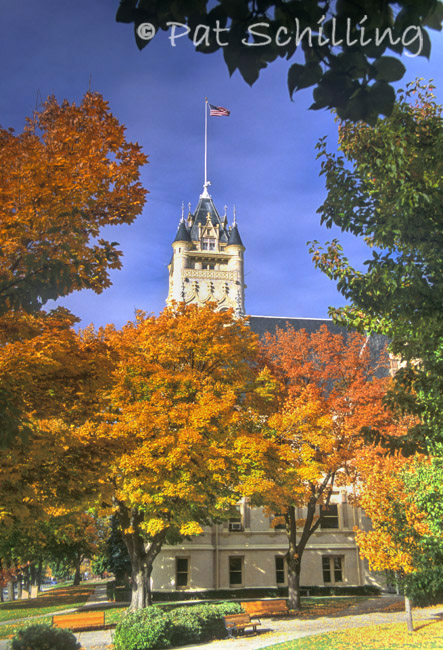 Courthouse Autumn