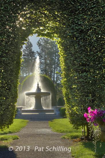 Fountain Aglow