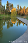 Pond Curve