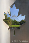 Through The Maple Leaf